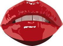 噘嘴红色性感的嘴唇弄湿了 库存图片
