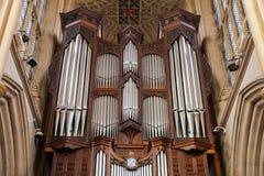 器官在巴恩,英国修道院教会里  库存图片