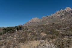 器官山的南部的边缘在新墨西哥 库存照片
