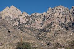 器官山的接合的峰顶 免版税图库摄影