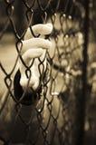 囚犯 免版税图库摄影