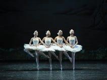 四一点天鹅这天鹅湖边芭蕾天鹅湖 免版税图库摄影