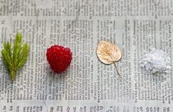 四个例证季节符号向量 免版税库存图片