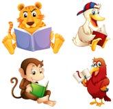 四个动物读 免版税库存照片