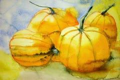 四个南瓜 五颜六色的水彩绘画 免版税库存照片