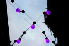 四个垂悬的紫色电灯泡 库存图片