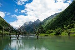 四个女孩山修造沟壑风景在四川,中国 免版税库存照片
