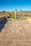 四个季节的马赛克在赫拉克勒斯劳方的议院里在Volubilis,摩洛哥 库存照片