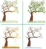 四个季节结构树 皇族释放例证