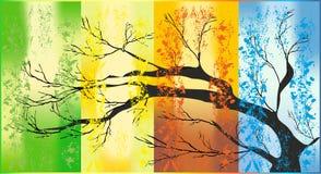 四个季节, 免版税图库摄影