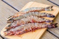 四个新鲜的整个老虎大虾 免版税库存图片