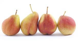 四个梨排列白色 库存照片