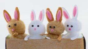 四个玩具兔宝宝 免版税库存照片