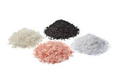 四个盐类型差异 免版税库存图片
