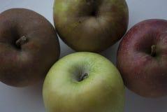 四个苹果顶上的照片在白色背景的 免版税库存照片