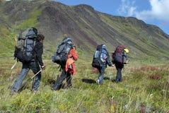 四个远足者 库存照片