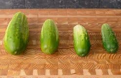 四个黄瓜 库存图片