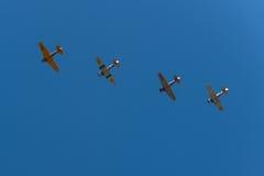 四个T-6顶上德克萨斯的飞机的飞行 库存照片