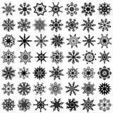 四十九个雪花向量 库存图片