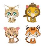 四只不同大猫的例证 免版税库存照片