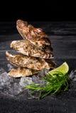 四只鲜美新鲜的牡蛎特写镜头与冰块和被切的石灰的在黑背景 可口热带海软体动物 图库摄影