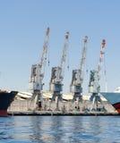 四台起重机行在埃拉特港口,以色列 免版税库存图片