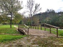 四周的公园 库存图片