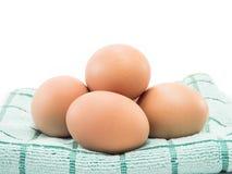 四在织品的鸡蛋在白色背景 图库摄影