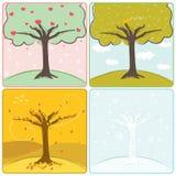 四季结构树 库存照片