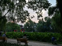 四川大学笨人池塘 免版税库存照片