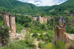 四川,中国- 2014年9月14日:Huanglian地球森林每著名l 库存照片