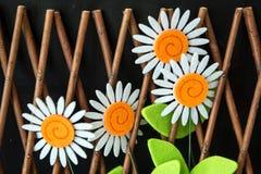 在格子篱芭的四朵雏菊花 免版税库存图片