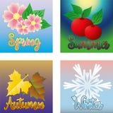 四张季节卡片,传染媒介 库存照片