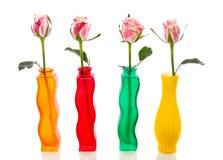四朵桃红色玫瑰选拔 免版税库存照片
