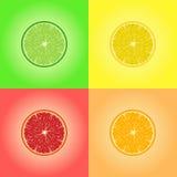 四柑橘水果的汇集 柠檬,石灰,桔子,葡萄柚 免版税库存照片