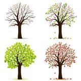 四棵季节树传染媒介 库存例证