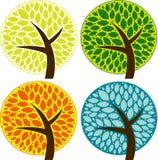 四棵季节树 库存图片