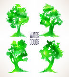 四棵水彩树 库存例证