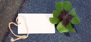 四片叶子三叶草和假日卡片 图库摄影