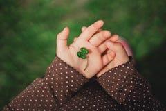 四片叶子绿色三叶草在愉快的年轻bab的小儿童` s手上 图库摄影
