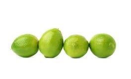 四石灰果子构成被隔绝在 免版税图库摄影