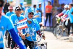 四色菊, THAILAND-AUGUST 16-2015 :这个事件是 库存照片
