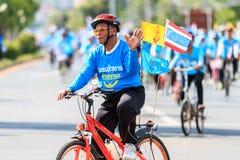 四色菊, THAILAND-AUGUST 16-2015 :这个事件是 免版税库存照片