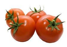 四蕃茄 库存图片