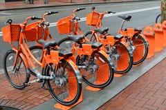 四辆城市橙色`租自行车`在波特兰,俄勒冈 库存照片