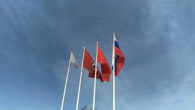 四面旗子在风振翼反对明亮的天空蔚蓝 股票视频