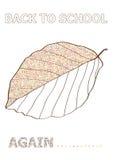 回到学校概念的秋天传染媒介与山毛榉叶子剪影 库存照片
