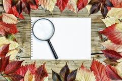 回到学校,学校框架,摘要,艺术,秋天,背景,美好,秀丽,莓果,吹,边界,褐色,变动, 免版税库存图片