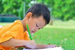 回到学校:男孩图画和绘画在绿草 免版税库存照片