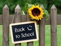 回到学校黑板用向日葵 免版税库存照片